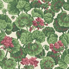 Rose/Forest Grn On Parchment Botanical Wallcovering by Cole & Son Wallpaper