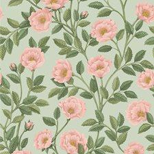 R/Lgrn/Degg Botanical Wallcovering by Cole & Son Wallpaper