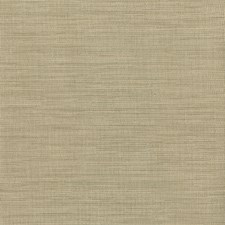 Light Brown Wallcovering by Brewster