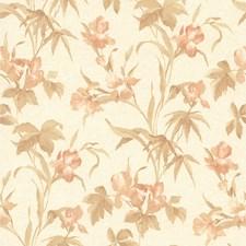 414-65779 Iris Peach Iris Floral by Brewster