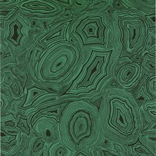 Green Contemporary Wallcovering by Cole & Son Wallpaper