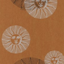 Brown Novelty Wallcovering by Cole & Son Wallpaper