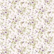 Lilac Wallcovering by Cole & Son Wallpaper