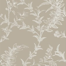 Taupe Wallcovering by Cole & Son Wallpaper