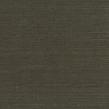 Brown Transitional Wallcovering by JF Wallpapers