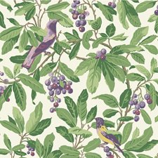 Green/Purple Botanical Wallcovering by Cole & Son Wallpaper