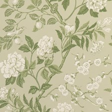 Soft Green Botanical Wallcovering by G P & J Baker