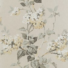 Dove/Ivory Wallcovering by G P & J Baker
