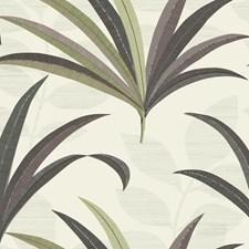 CA1550 El Morocco Palm by York