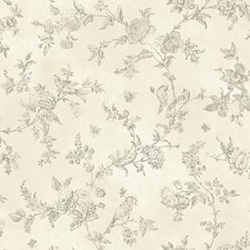 CCB02193 French Nightingale Cream Toile by Brewster