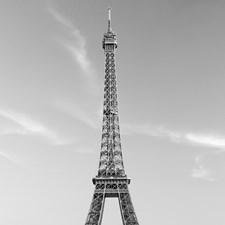 DM604 La Tour Eiffel Wall Mural by Brewster
