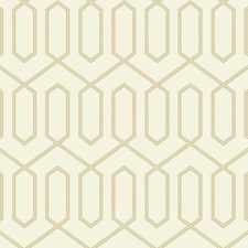 DR6326 Dotted Trellis by York
