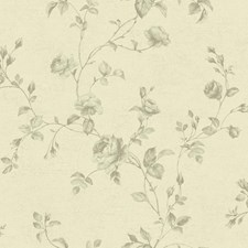 KH7080 Rose Toile by York
