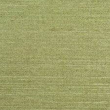 Olive Wallcovering by Ralph Lauren Wallpaper