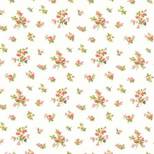 White/Coral/Blue Pink Roses Wallcovering by York