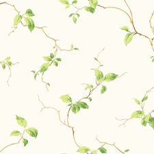 Pure White/Yellow Green/Mint Green Leaves Wallcovering by York