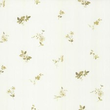 Cream/Off-white/Grey Floral Mini Wallcovering by York