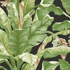 PSW1035RL Banana Leaf by York