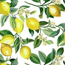 RMK11655WP Lemon Zest by York