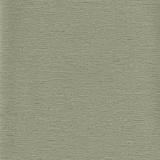 Greyish Green Textures Wallcovering by York