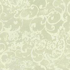 Pale Blue/Green/Pale Yellow Scroll Wallcovering by York