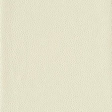 Cream Textures Wallcovering by York