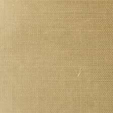TR263 Grasscloth by Winfield Thybony