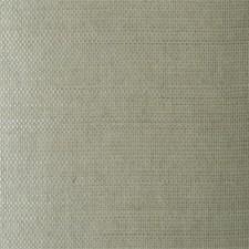 TR273 Grasscloth by Winfield Thybony