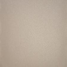 Latte Solid Wallcovering by Clarke & Clarke