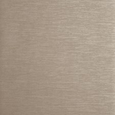 Antique Solid W Wallcovering by Clarke & Clarke