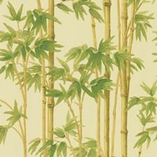 Light Green/Green/Yellow Wallcovering by Kravet Wallpaper