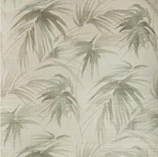 Ivory/Grey/Charcoal Botanical Wallcovering by Kravet Wallpaper