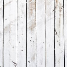 WALS0256 Pale Wood Wall Mural by Brewster