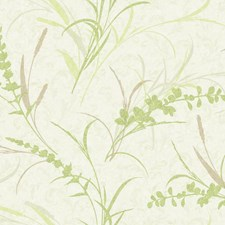 Oyster White/Dusty Brown/Pale Clover Green Botanical Wallcovering by York