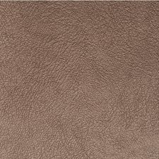 Clove Solid Wallcovering by Winfield Thybony