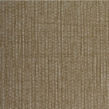 Toast Solid Wallcovering by Winfield Thybony