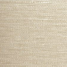 Straw Solid Wallcovering by Winfield Thybony