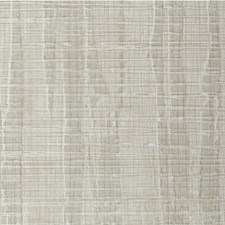 Lichen Texture Wallcovering by Winfield Thybony