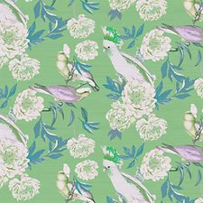 Tropical Wallcovering by Scalamandre Wallpaper