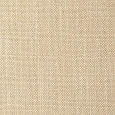 WNT8655 Natural Textiles by Winfield Thybony