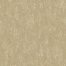 Brown/Gold Novelty Wallcovering by York