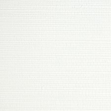 Froth Wallcovering by Scalamandre Wallpaper