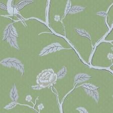Green/Grey Wallcovering by Scalamandre Wallpaper