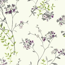 White/Grey/Purple Floral Wallcovering by York